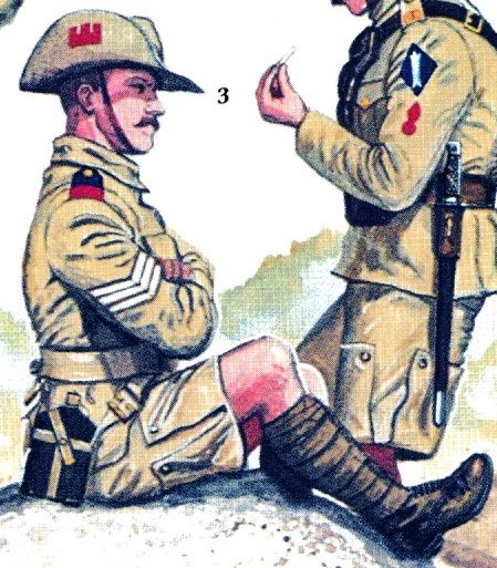 An illustration by Gerry Embleton showing a sergeant of 1/Suffolk wearing a slouch hat with a red castle badge.