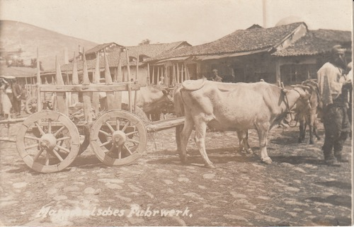 German postcard of a Macedonian ox cart